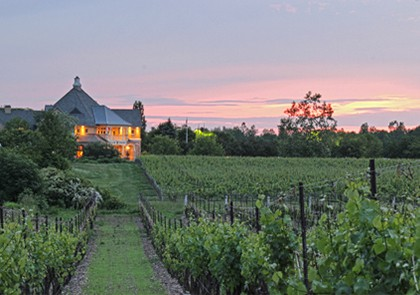 sunset winery tour